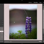 Lightroom 5: New Radial Filter Features