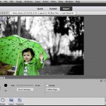 Adobe Photoshop Elements: Add Splashes of Color in Black and White Photos in 60 Seconds
