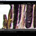 What is Chromatic Aberration (Color Fringing) and How Do I Fix It in Lightroom?