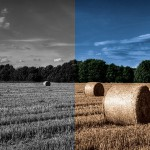 How to Use Photoshop to Colorize a Black and White Photo