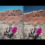 Shooting Under a Mid-Day Sun :  You Keep Shooting with Bryan Peterson: Adorama Photography TV
