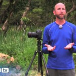 Understanding Auto Exposure Bracketing