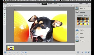 Get Started with Photoshop Elements 13