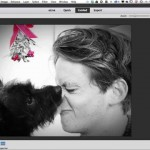 Color Pop Your Photos in Photoshop Elements