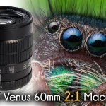 First Look at the VENUS V-DX 60mm f/2.8 2:1 Super-Macro Lens (and Some Macro Shooting Tips)