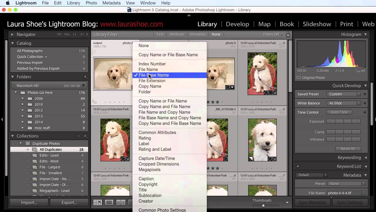 Image Result For Plugin Photoshop Editing Photo