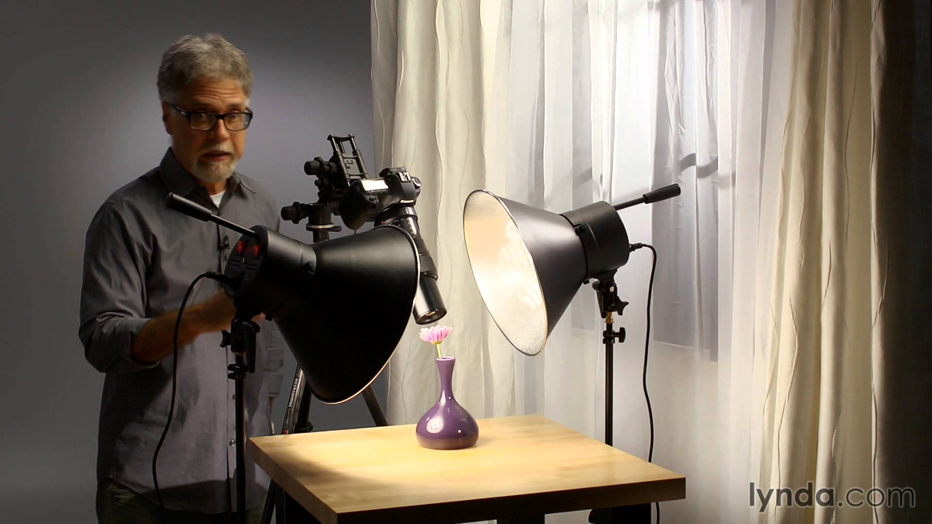 Macro Photography With Continuous Light