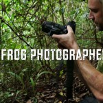 The Frog Photographer