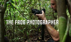 The Frog Photographer BBC Earth