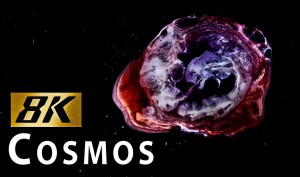 CREATING-THE-COSMOS-in-8K-with-Canon-5DS-SHANKS-FX-PBS-Digital-Studios