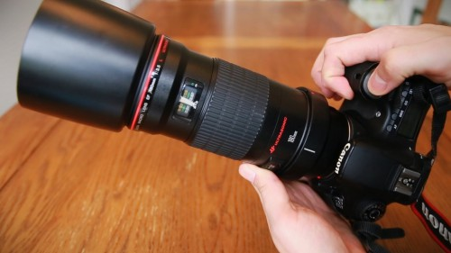 Canon-EF-180mm-f3.5-Macro-USM-L-lens-review-with-samples-Full-frame-and-APS-C