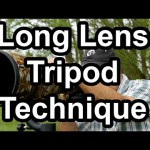 Tips for Using Long Lenses with Tripod and a Gimbal