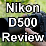 A Wildlife Photographer Perspective on the Nikon D500