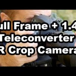 Which is Better – Crop Camera Or Full Frame Camera With A 1.4 Teleconverter?