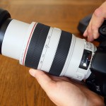 Canon EF 70-300mm f/4-5.6L IS USM Lens Review