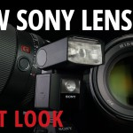 A Look at the Sony FE 85mm f/1.8 and the Sony FE 100mm f/2.8 STF GM OSS
