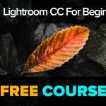 Lightroom CC 101 (Plus How to Export Develop Presets from to Lightroom CC)