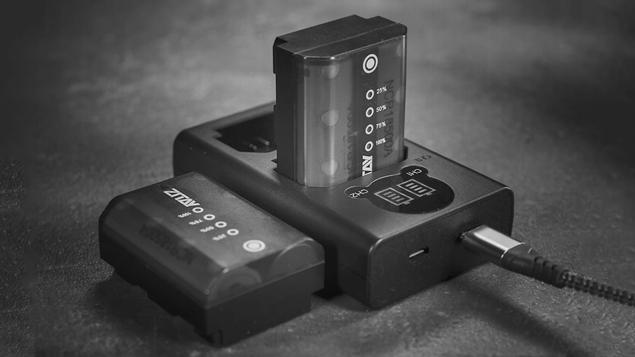 Tiny Z-type dual battery charger